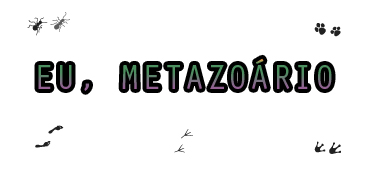 Eu, Metazoário – Primeiro post