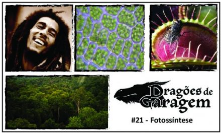 Dragões de Garagem #21 Fotossíntese