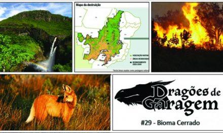 Dragões de Garagem #29 Bioma Cerrado