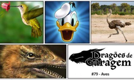 Dragões de Garagem #79 Aves