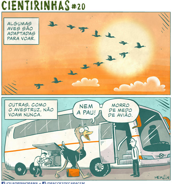 CIENTIRINHAS #20