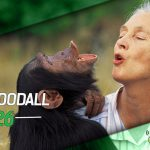 Dragões de Garagem #126 Jane Goodall – #OPodcastÉDelas2018