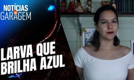 LARVA AZUL | Notícias da Garagem