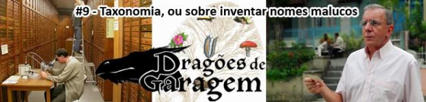 Dragões de Garagem #9 Taxonomia, ou sobre inventar nomes malucos