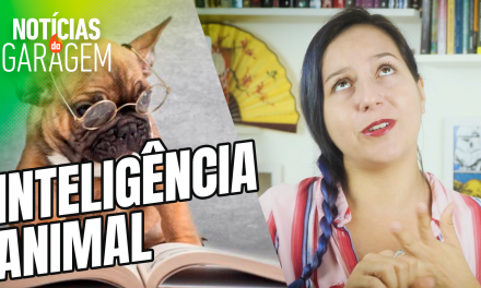 INTELIGÊNCIA ANIMAL