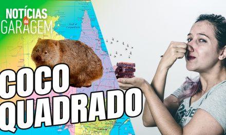 COCÔ QUADRADO